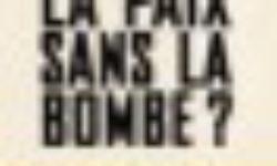 La paix sans la bombe ? Organiser le désarmement nucléaire