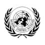FINALE DU MODEL UNITED NATIONS (MUN) image